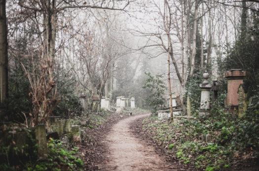 a derelict cemetery | abney park