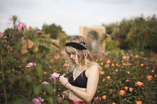 in a field of roses